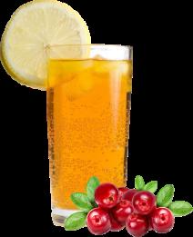 garnish-lemon